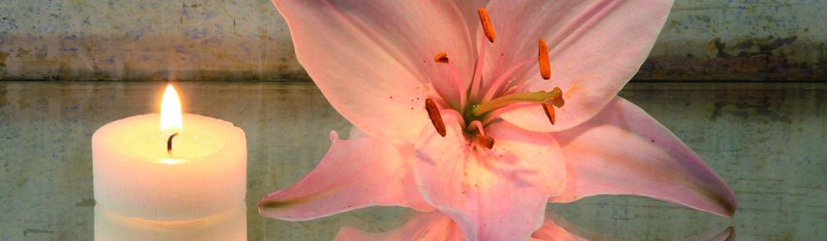 Blume_Slider